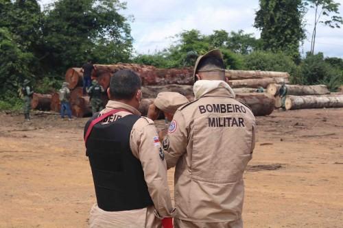 Batalhão de Incêndio Florestal dos Bombeiros atua no combate a queimadas no estado