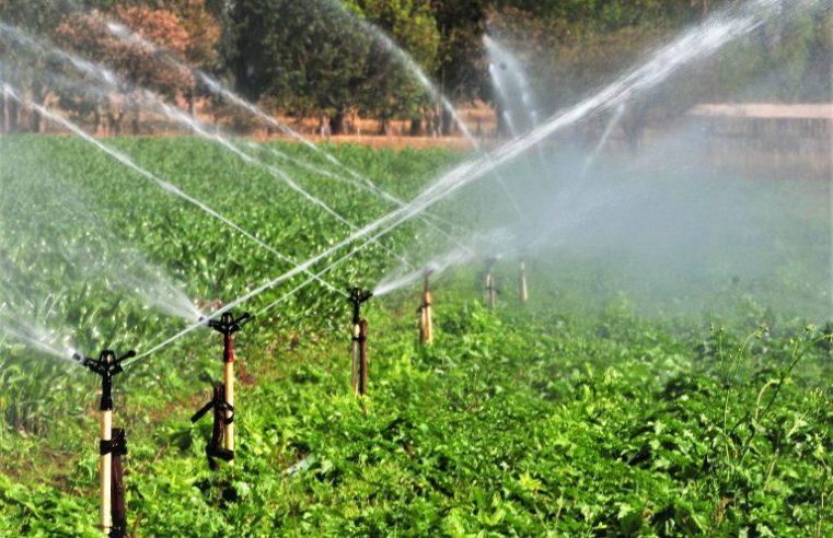 Cancelado debate sobre Dia Nacional da Agricultura Irrigada