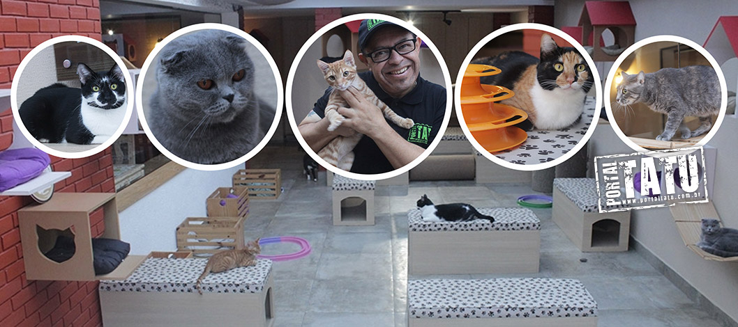 Cardápio especial no Dia dos Namorados do Gatto Macchiato – 12/06/2017
