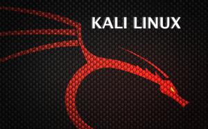 Kali Linux 1.1.0 lançado