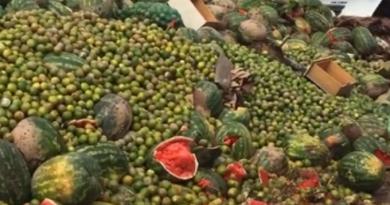 Chuvas geram perdas de R$ 20 mi e 7 mil toneladas de alimentos na Ceagesp