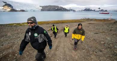 Fungo da Antártica pode facilitar reaproveitamento de rejeito de mineração