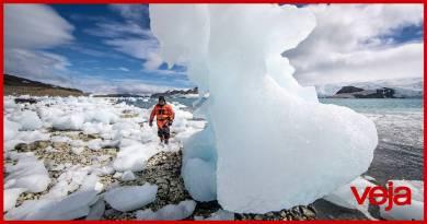 Pela primeira vez na história, Antártica bate os 20°C