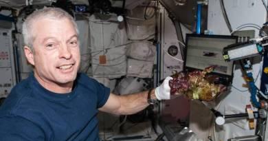 Cientistas da Nasa plantam, pela primeira vez, alface no espaço