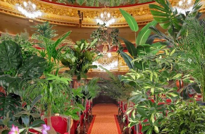 Ópera faz concerto exclusivo para plantas em Barcelona