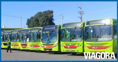 Após recusar acordo, motoristas de ônibus continuam greve em Teresina