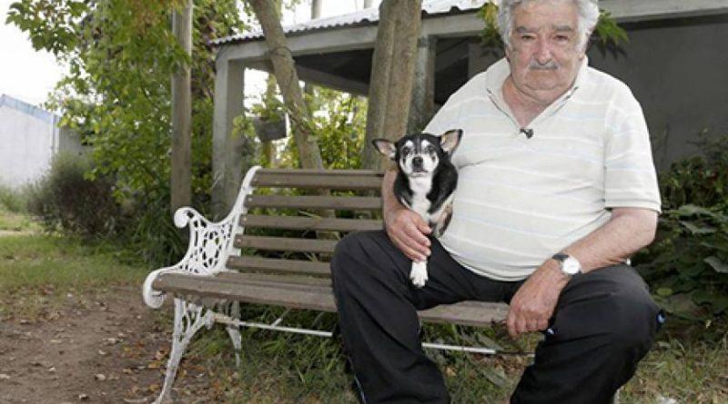 José Mujica anuncia fim de carreira política para cuidar da saúde