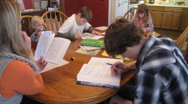 Comissão aprova debate sobre educação sem escola na Câmara