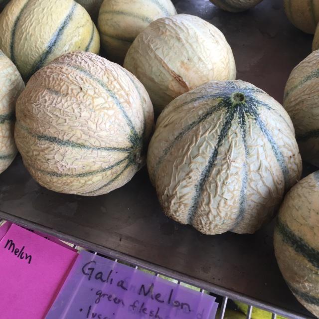 Fresh Thyme Farmers Market Ohio