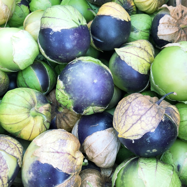 Purple Tomatillos Information, Recipes and Facts