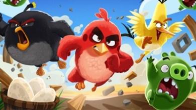 angry birds фото