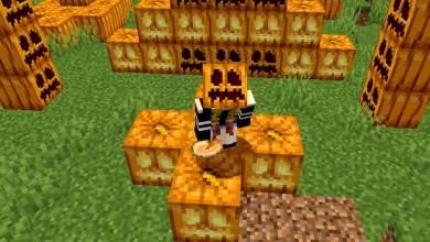Better Pumpkin Wearing Minecraft Мод