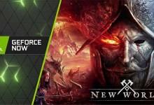 New World на GeForce Now. Вам больше не нужно беспокоиться о видеокарте