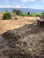 泥との闘い、妻の実家(朝倉市)に行き泥をかき出す。