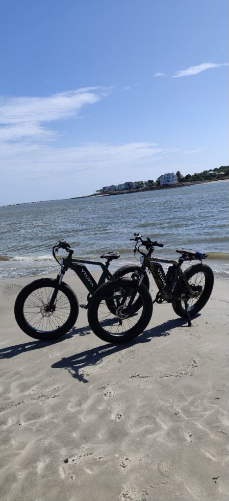 Port City Moped Electric Bikes