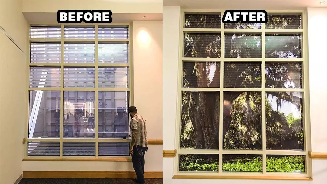 window enhancements