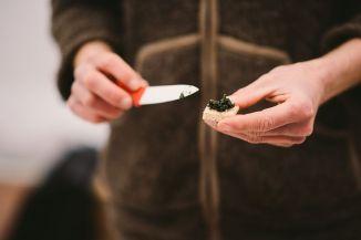 Dégustation de tartare aux algues alimentaires