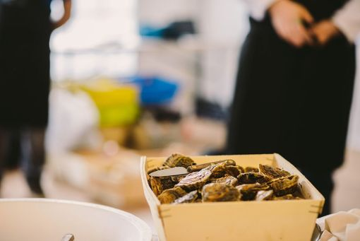 Les huîtres de la compétition