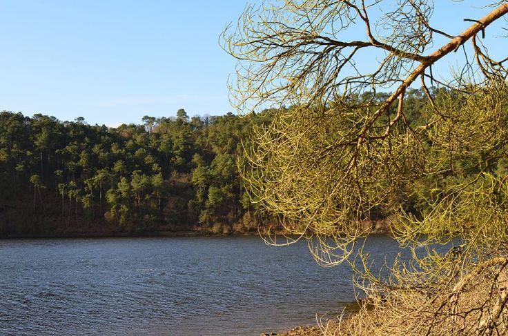 Lac de Guerlédan plein en mars 2015