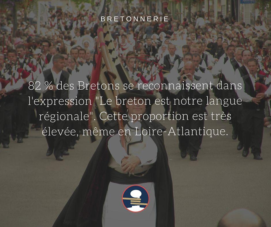 Bretonnerie : appartenance de la langue bretonne