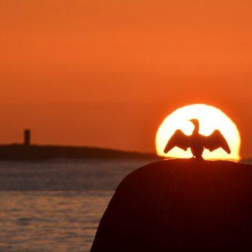 Coucher de soleil à Trévignon