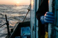 La pêche appartient à ceux qui se lèvent tôt !