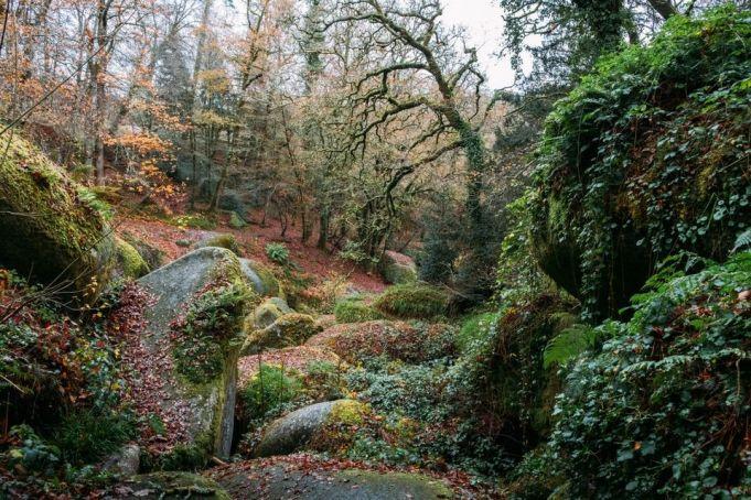 Le chaos rocheux de la forêt de Huelgoat