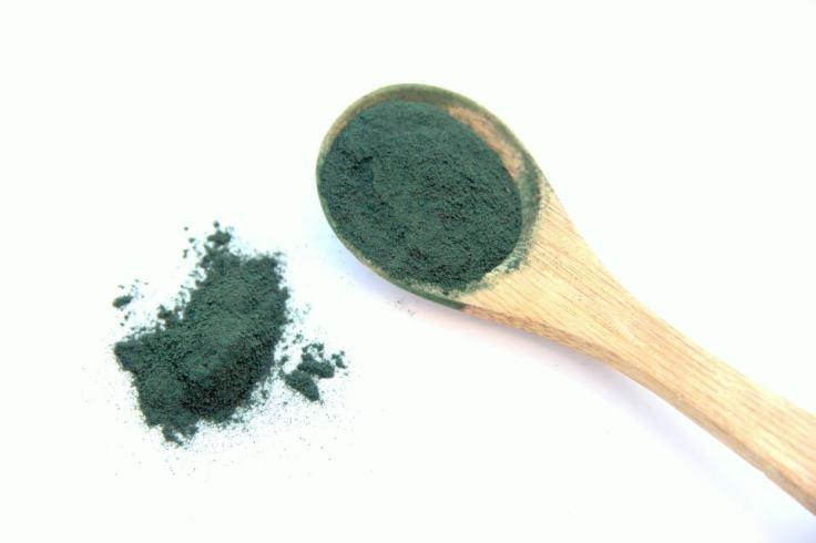 Cuillère d'algue spiruline en poudre