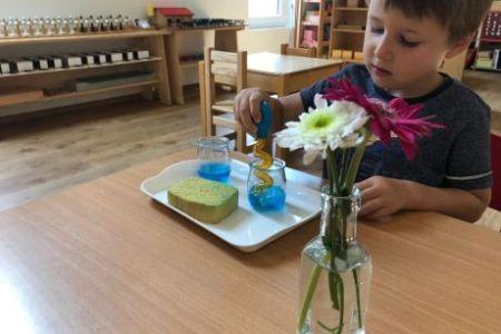 un enfant transvase de l'eau colorée avec une grosse pipette d'un pot à un autre.