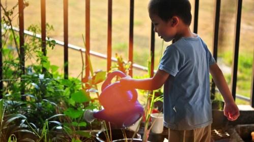 Jardiner avec les enfants: une activité à faire en extérieur avec les enfants.