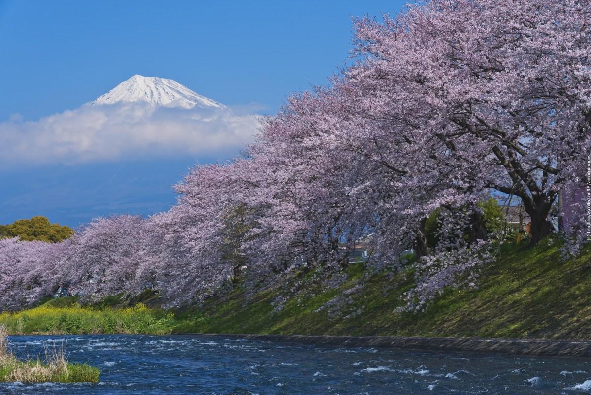 富士は日本一の山!日本各地で愛される「おらが富士」 11選