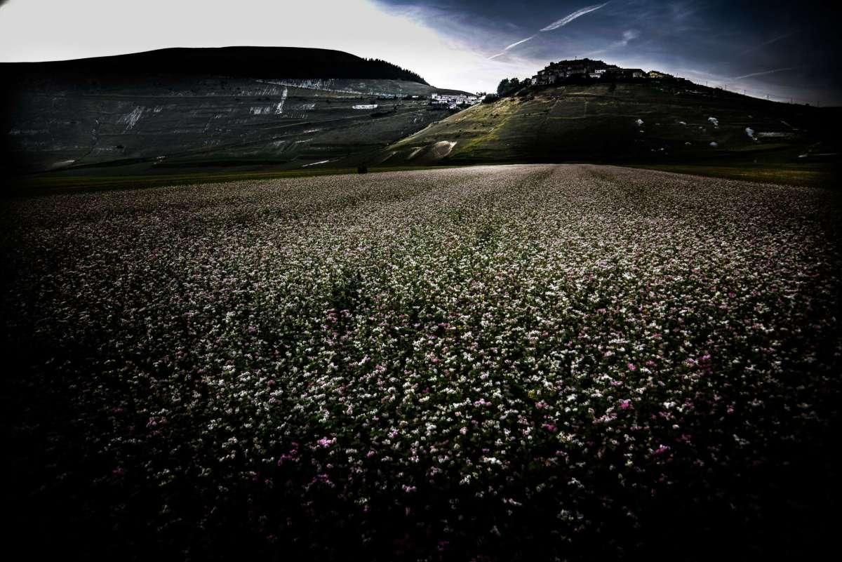 SUBARU OUTBACK, SET CASTELLUCCIO DI NORCIA ©lucaromanopix