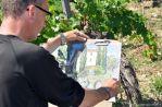 leclerc-dessine-en-provence