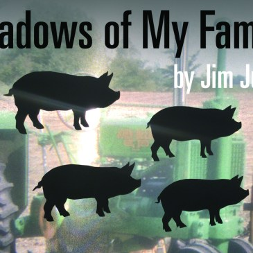 REVIEWS – Shadows of My Family