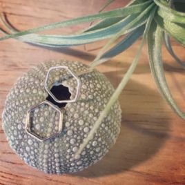 2 hexagonal stud earrings sat on a sea urchin with an air plant in the background