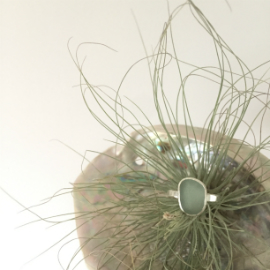 Aqua seaglass ring on a shell