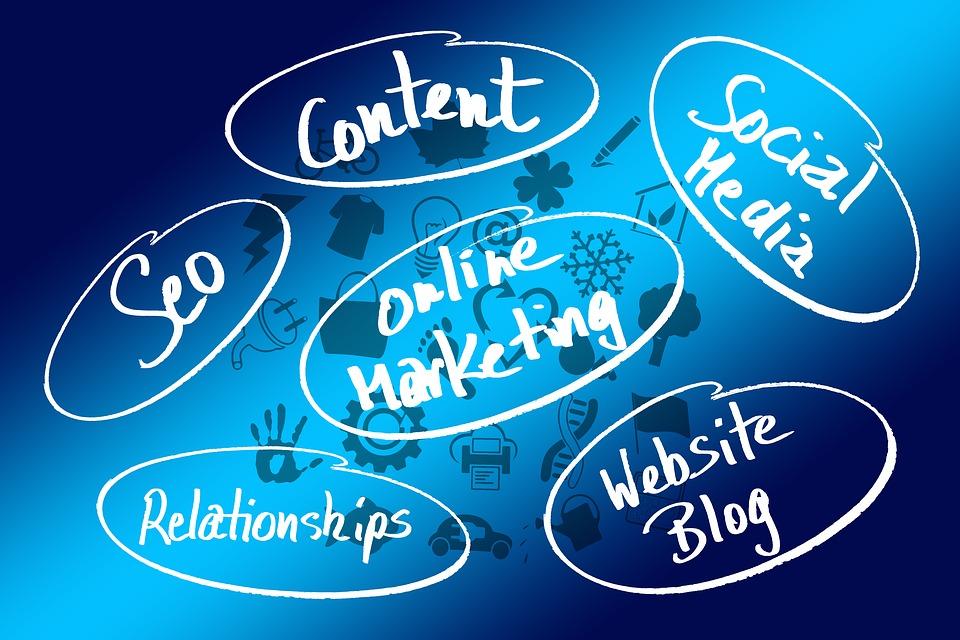 expert în marketing online