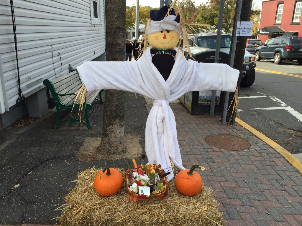 Port Jefferson Scarecrow festival 2015
