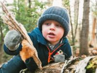 hoyt arboretum preschool walks