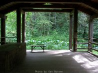 View from inside the pavilion to the pond.