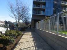 GreenwayTrail_IMG_3473