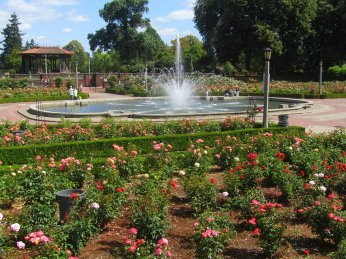 Roses, fountain and bandstand are seen in this photo.