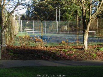 WashingtonParkl_2018-01-14 10.52.09