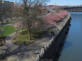 WaterfrontPark_IMG_3869