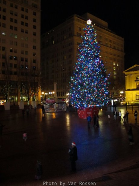Portland's Christmas Tree in Pioneer Court House Square.