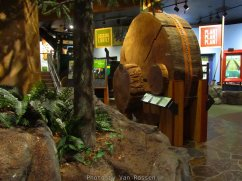 ForestMuseum_IMG_1960