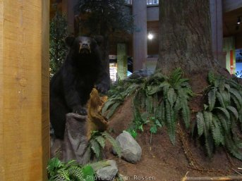 ForestMuseum_IMG_2010