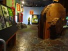 ForestMuseum_IMG_2036