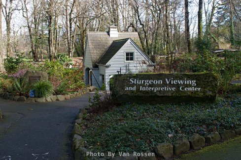 The sturgeon viewing building is always a popular spot to stop at.