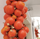 Canne Torre Tomato Seeds